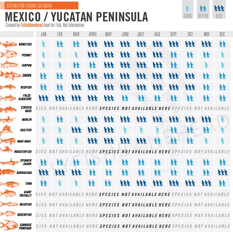 Cabo Fishing Calendar Seashine Adventures