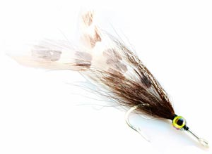 tarpon on the fly - the tarpon roach fly