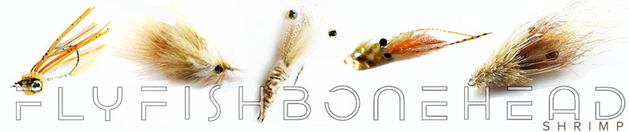 bonefishing -bonefish fly - bonefish on the fly- flyfishbonehead is fly fishing for bonefish.  Tail fly fishing magazine is loaded with bonefish features