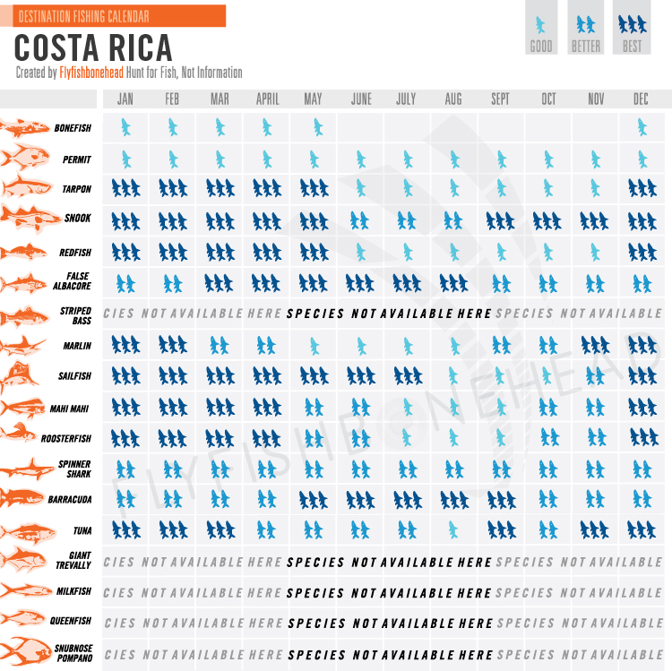 Costa rica flyfishbonehead for Costa rica fishing calendar