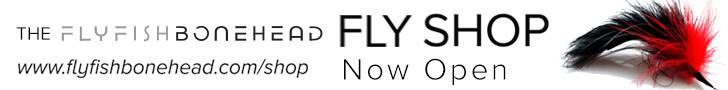 fly shop_leaderboard