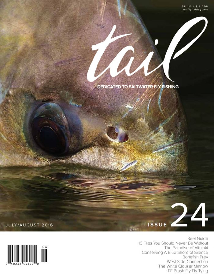 Tail-24-COVER-FINAL